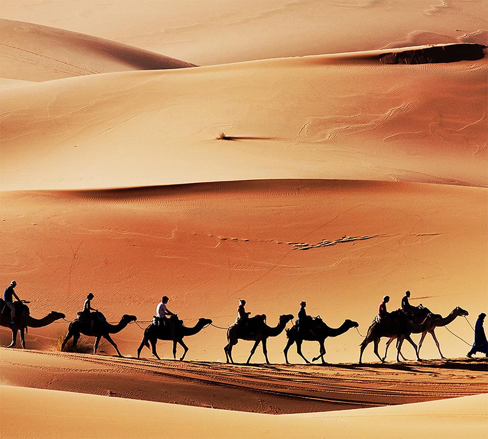 Фотообои Пустыня