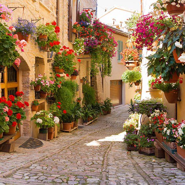 Фотообои Италия в цветах