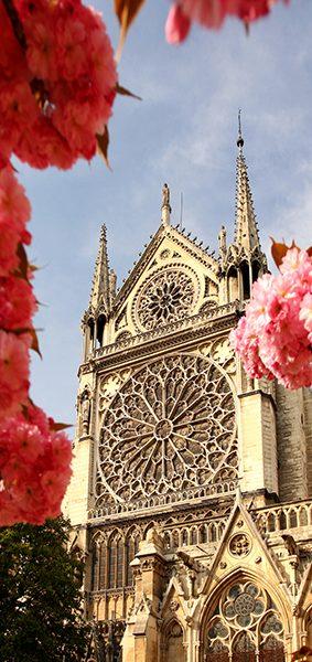 Нотр-Дам де Пари в цветах