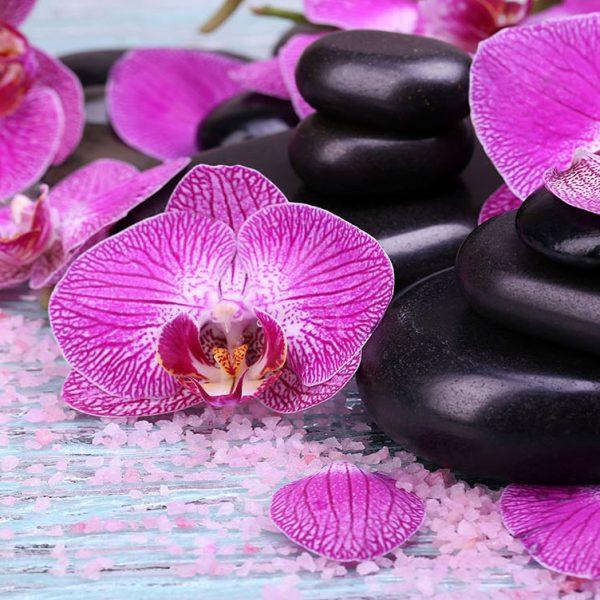 Орхидеи спа